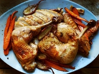 Fast and Juicy Roast Turkey in Parts