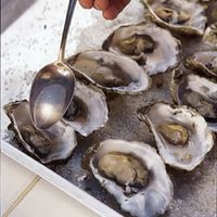 Roasted Oysters with White Wine