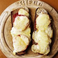 Open-Face Grilled Cheese Sandwich