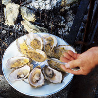Grilled Oysters with Butter Sauce (Huîtres Grillées au Beurre Blanc)