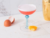 Gin-Campari Sour