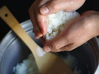 Japanese Boiled Rice