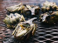 Grilled Artichokes with Espelette Mayo