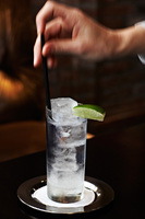 Immersion Gin and Tonic
