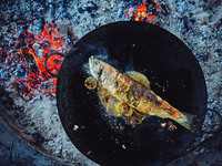 Grilled Stuffed Trout with Pebre Sauce